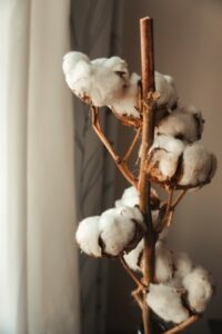 Boutique baby clothes-Cotton stem with white cotton balls