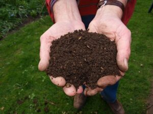 How to find eco-friendly nappies? Two hands holding fresh compost.